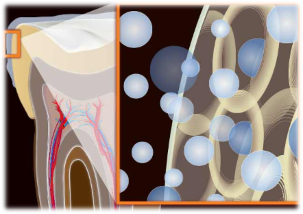 mecanismos de acción en el blanqueamiento dental